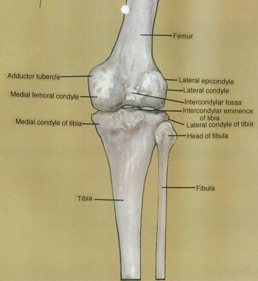 microfracture femoral condyle rehab instructions
