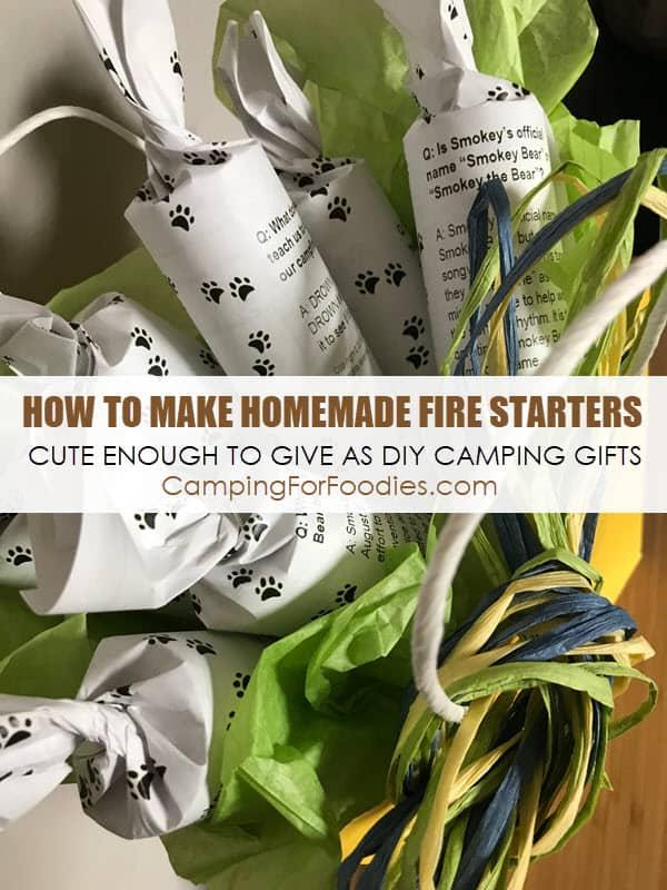 instructions fo rskytech fireplace starter