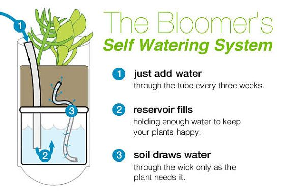 planter self watering system instructions